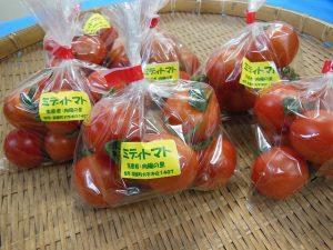 向陽の里トマト
